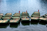 A few of the 1,200 rowboats.