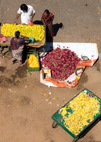 Fruit and flower leaves for sale in the street.