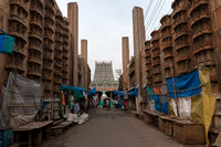 Alley leading to Meenakshi temple.