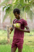 Cutting the coconut.