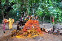 Shrine for the snake god, Manasa, in old ant hill.