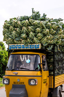 Three-wheeled truck overloaded with cauliflowers.