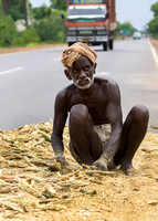 Old farmer sitting on the road in the middle of his millet.