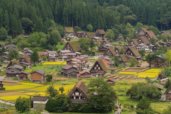 Part of Shirakawago village seen from the mountains.