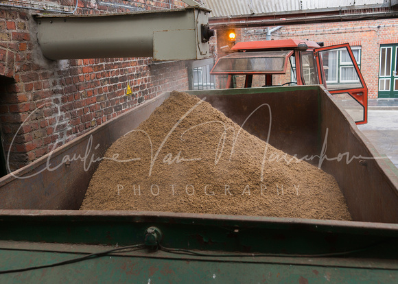 The spent grain-mash is evacuated as cattle-fodder by a farmer.