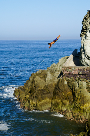 Diving the rocks.