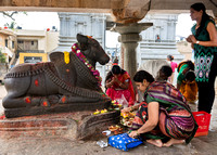 Praying to Nandi.
