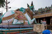Looking to Meenakshi temple with Nandi.
