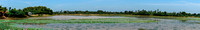 Panoramic view of pond.